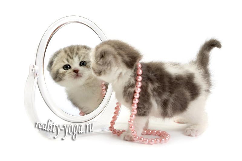 манас, йога, зеркало,