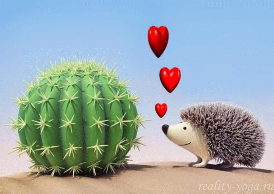 любовь ёжика