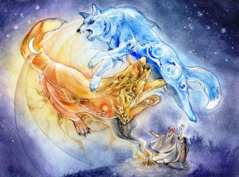 два волка борьба