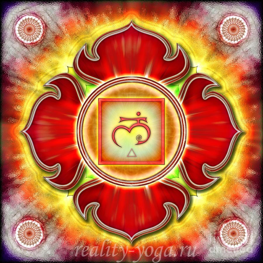 muladhara-reality-yoga