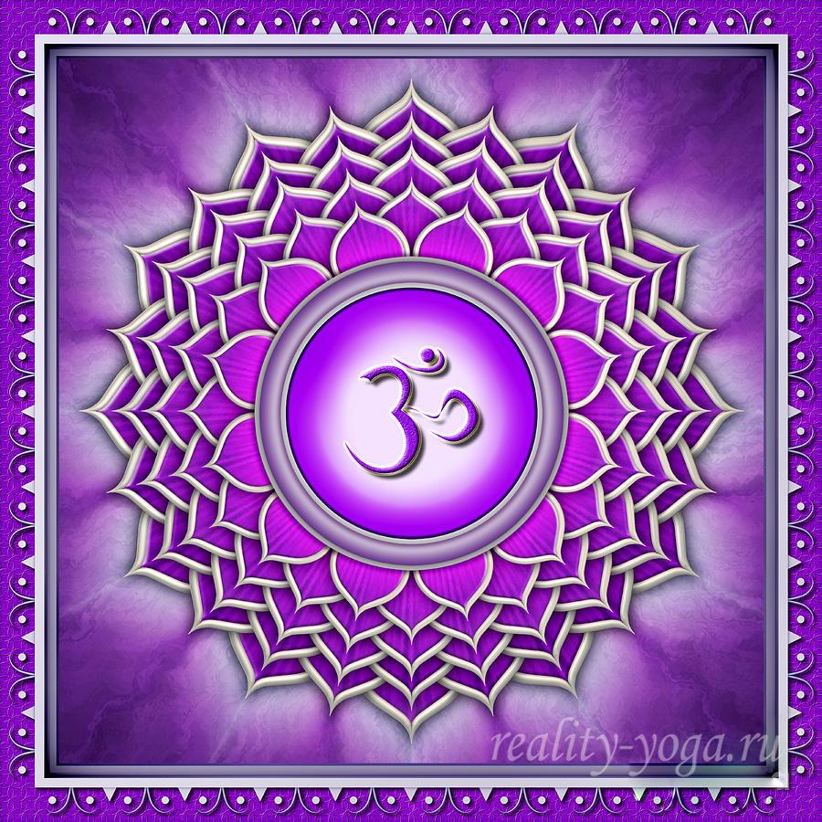 sahasrsrs-reality-yoga2