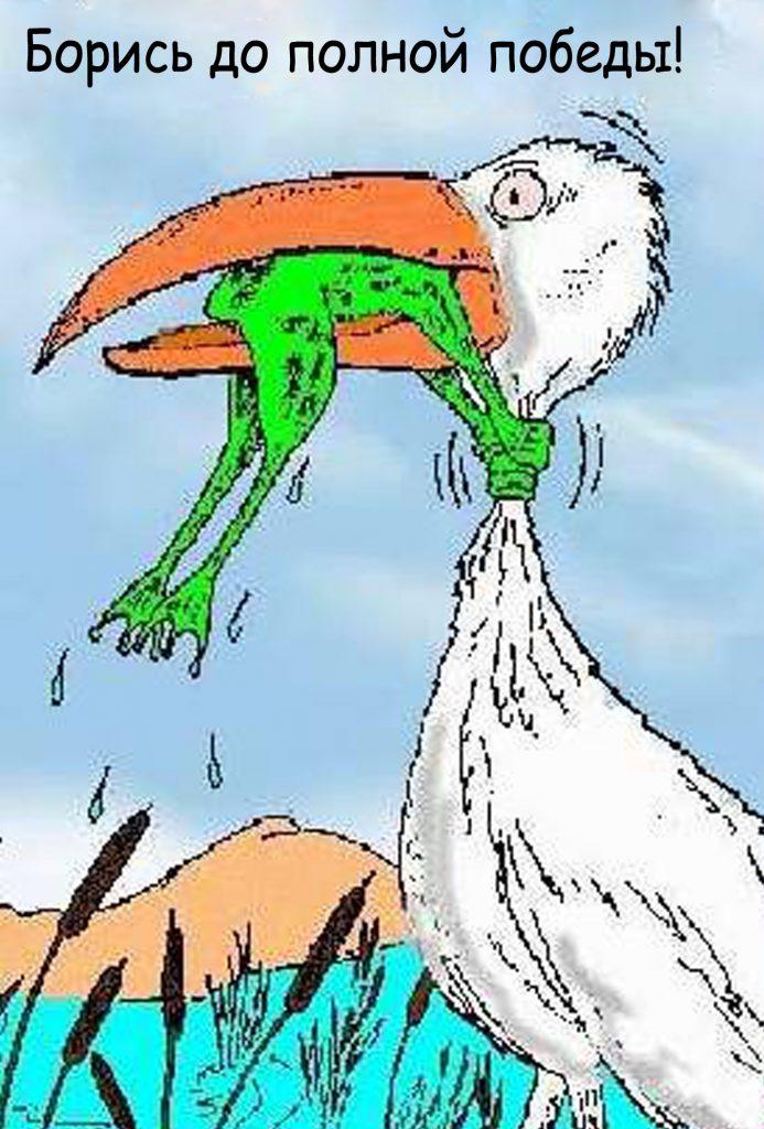 Лягушка сжимает горло цапле, победа, борись, никогда не сдавайся
