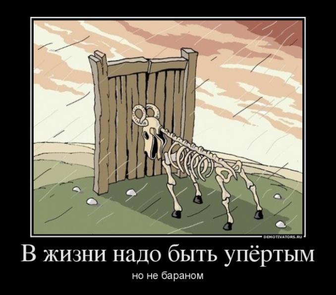 картинка бараны в ворота почаще пускай разливаться